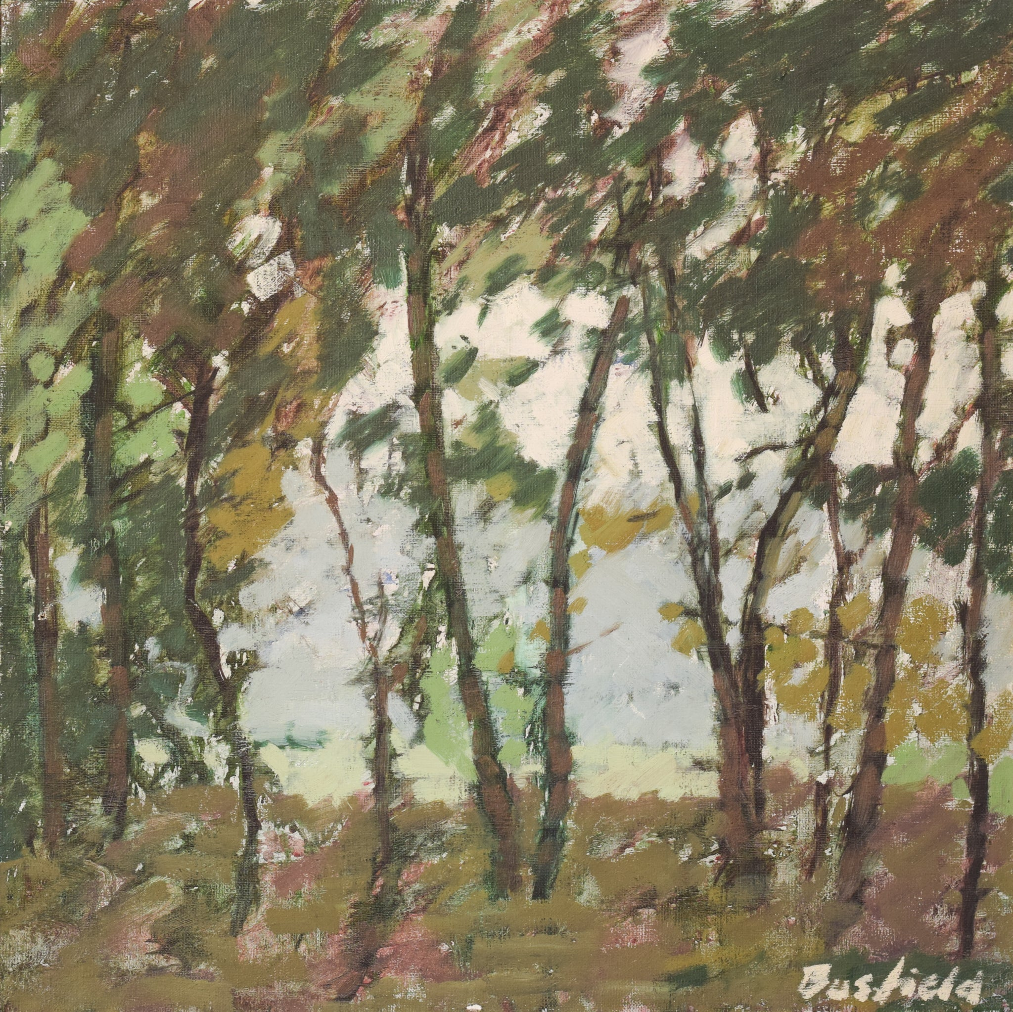 Impressionist Plein Air Trees and Light. Oil by Brian Busfield