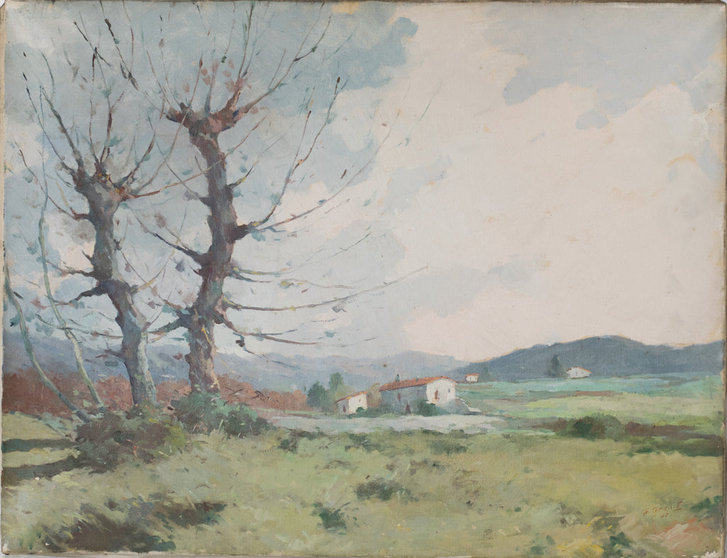 Landscape with a view of trees and mountains