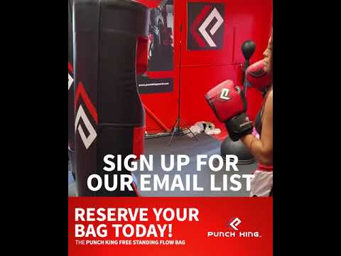 "COMING SOON - The Freestanding  ""Flow Pro"" Punching Bag"