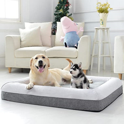 2-In-1 Orthopedic Memory Foam Dog Lounger Bed