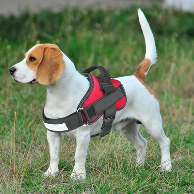Back Padding No Pull Dog Harness