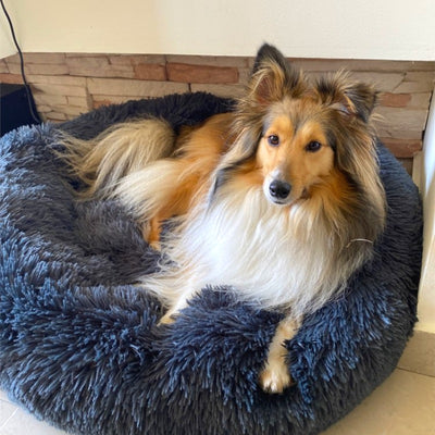Snoozify™ Calming Dog Bed
