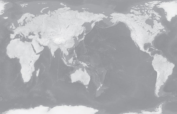 Custom World map in Silver
