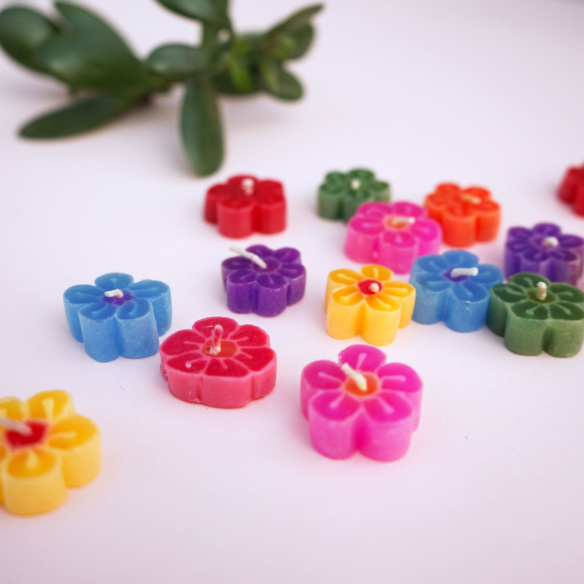 Assorted Flower Floating Scented Candles