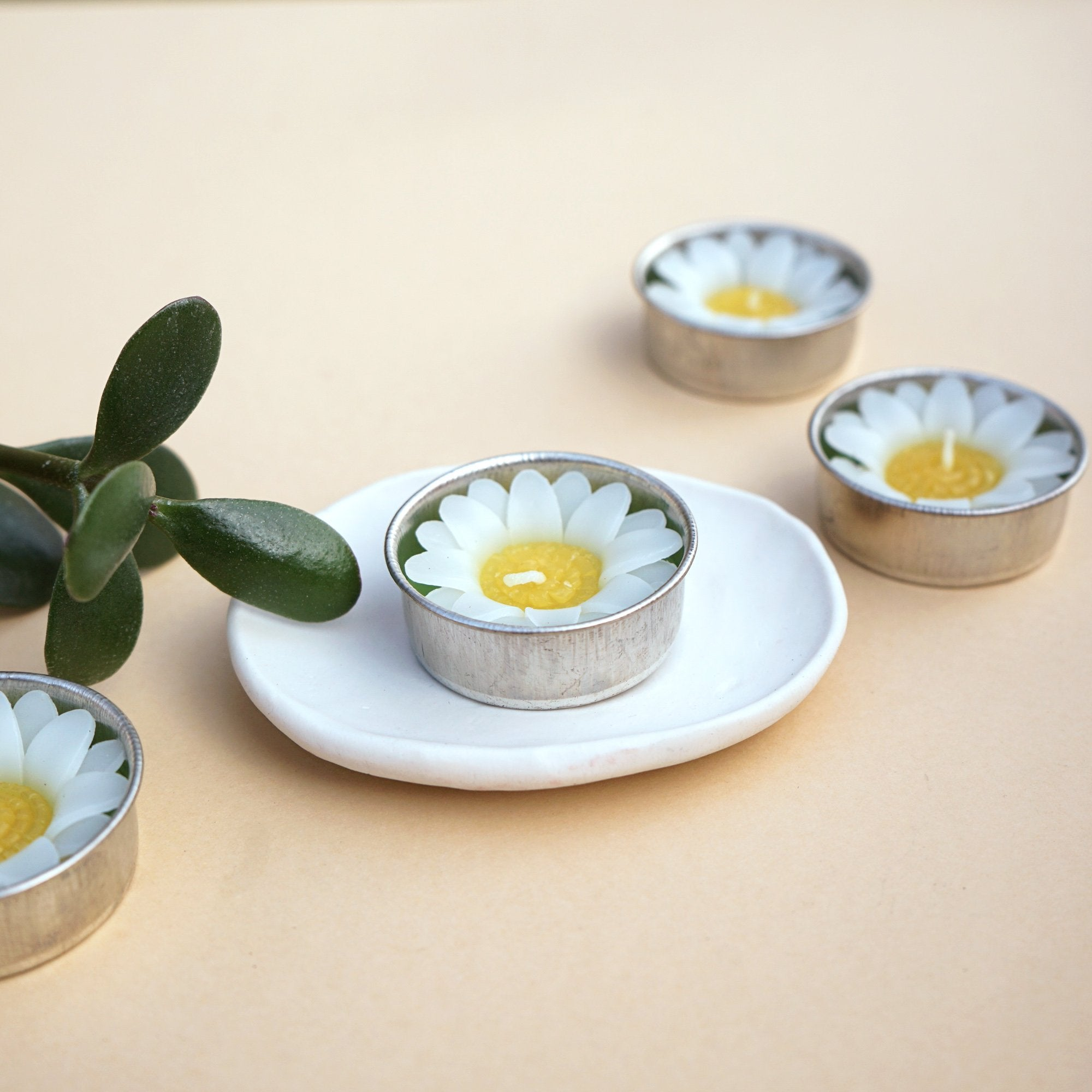 White Daisy Scented Tea lights