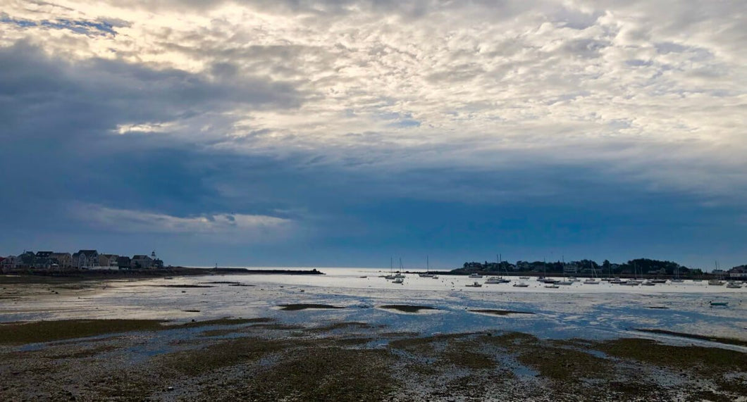Scituate harbor low tide