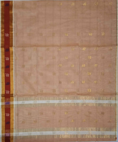 Pastel brown Handwoven Venkatagiri cotton Saree