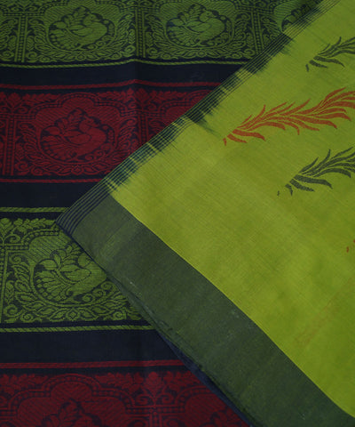 Green Blue Salem Handloom Cotton Saree
