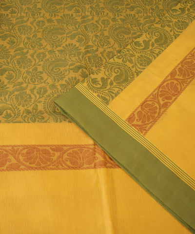 Salem Handloom Cotton Saree in Yellow