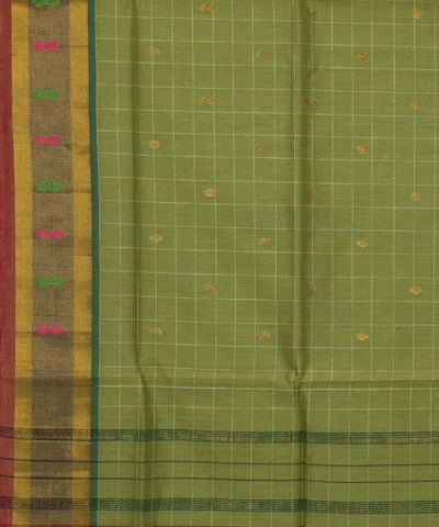 Venkatagiri Green Check Handloom Cotton Saree