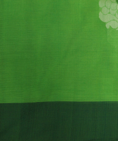 Green Handloom Coimbatore Cotton Saree