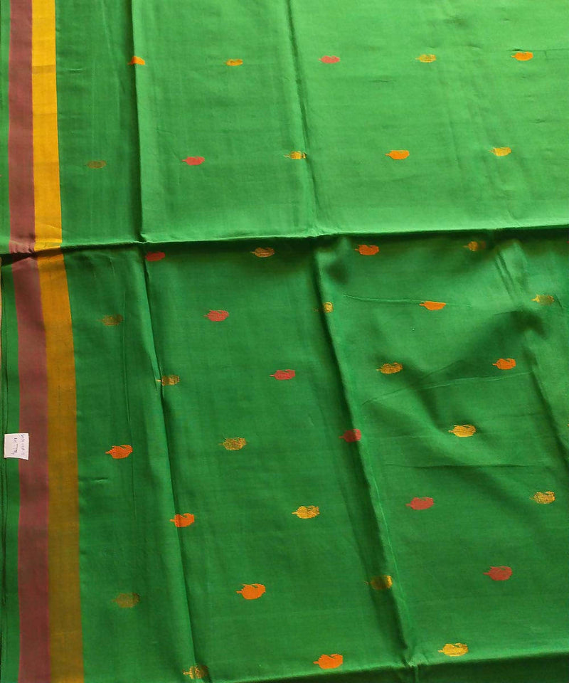 Venkatagiri handloom parrot green cotton saree