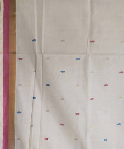 White Handwoven Venkatagiri Cotton Saree