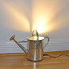 Funky unusual lighting,  THE 'WATT A LIGHT!' FLOOR UPLIGHTER upcycled