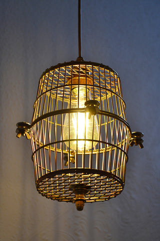 'Cage Light' Pendant, Funky unusual lighting