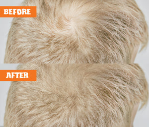 Nut Job Blond Hair Thickening Fibres Before and After