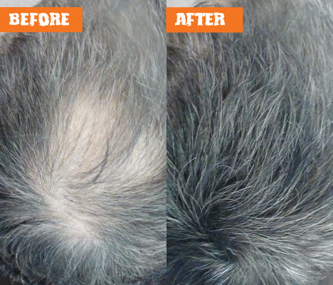 Nut Job Medium/Dark Grey Hair Fibres Before and After