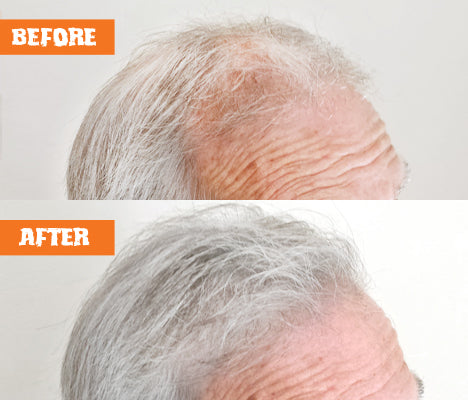 Nut Job Light Grey Hair Fibres Before and After