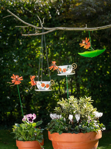 Gerbera Feeders