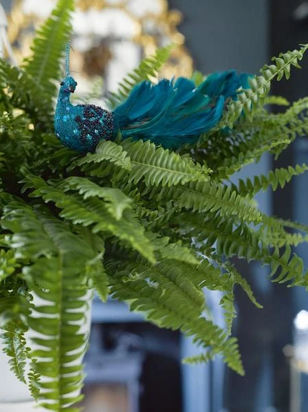 Pair of Peacock Tree Decs