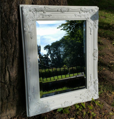 Ornate Wall Mirror (3 Colours) Antique White,  - Olive and Sage, Olive and Sage  - 6