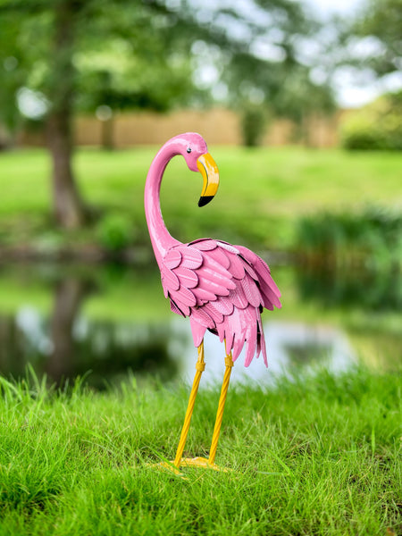 Lola the Flamingo