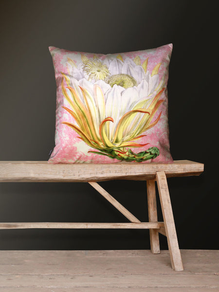 Pink Protea Velvet Cushion