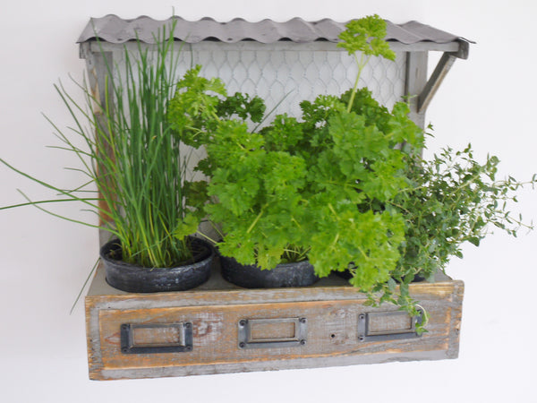 Wooden market stall herb planter for Indoor gardening market size