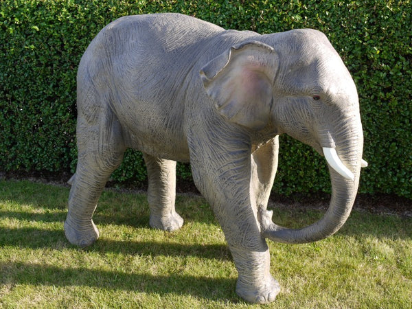 Ellie the Elephant!