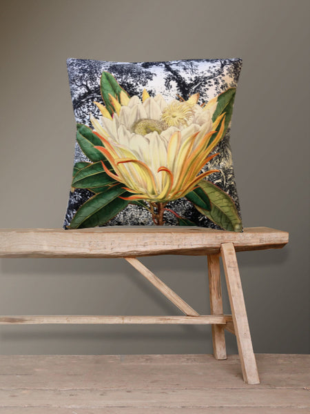 Velvet Protea Cushion