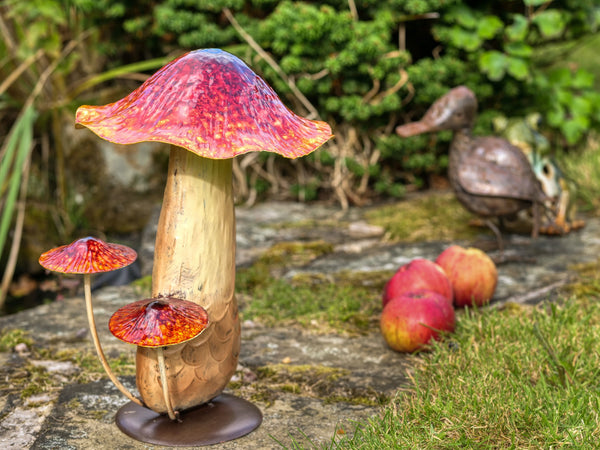 Large Red Toadstool