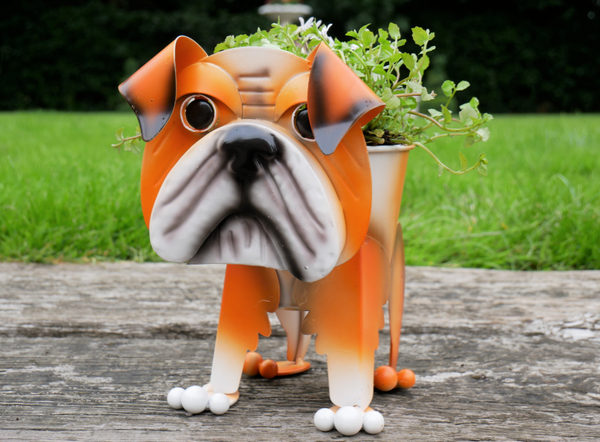 Bella the Bulldog Planter