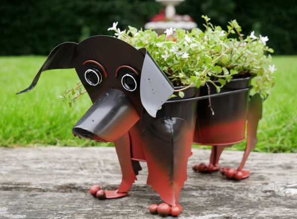 Woof the Dachshund Planter