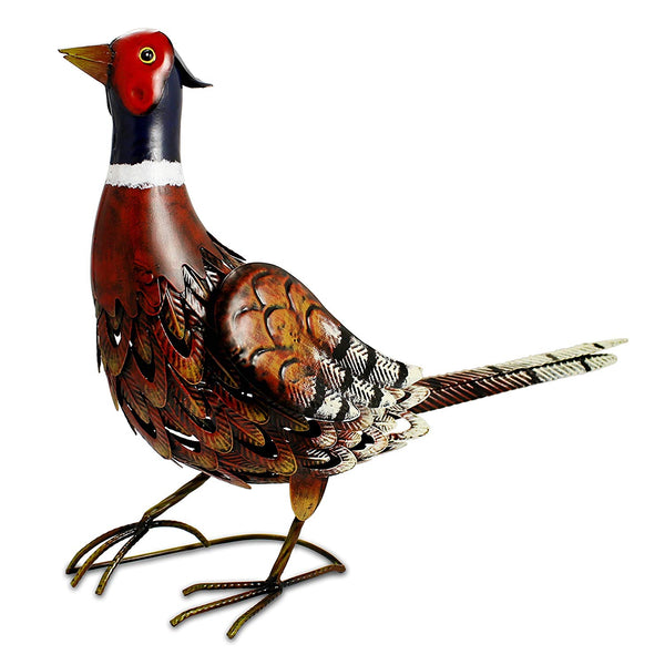Pedro the Pheasant!