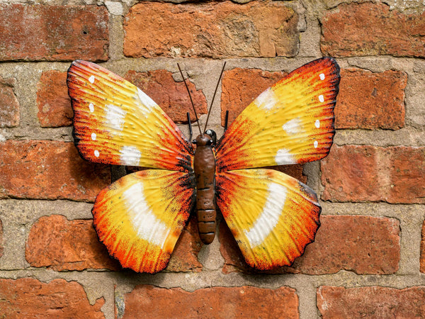 Clementine Butterfly