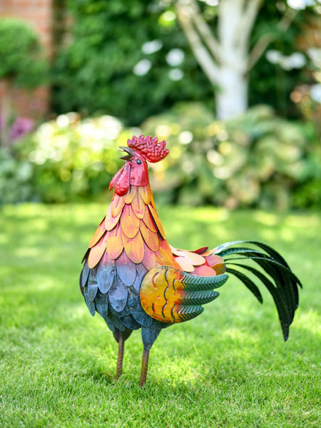 Ronald the Rooster