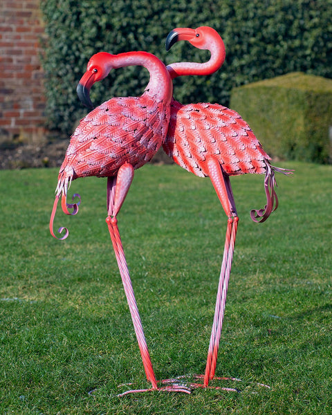 Clarabella the Flamingo!