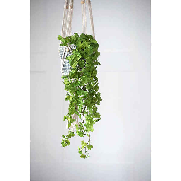 Hanging Clover Spray