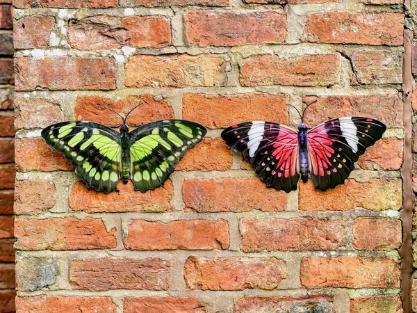 Barnaby Butterfly