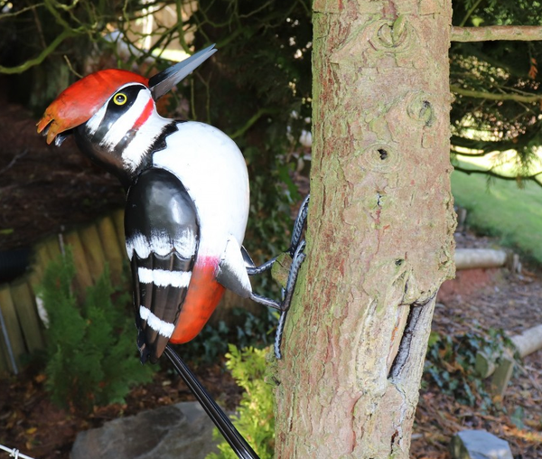 Willy the Woodpecker!