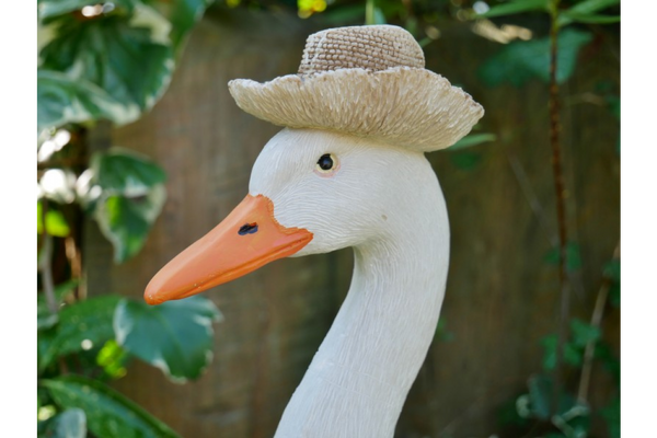 Gertrude the Goose!
