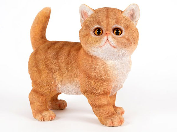 Garfield the Ginger Cat