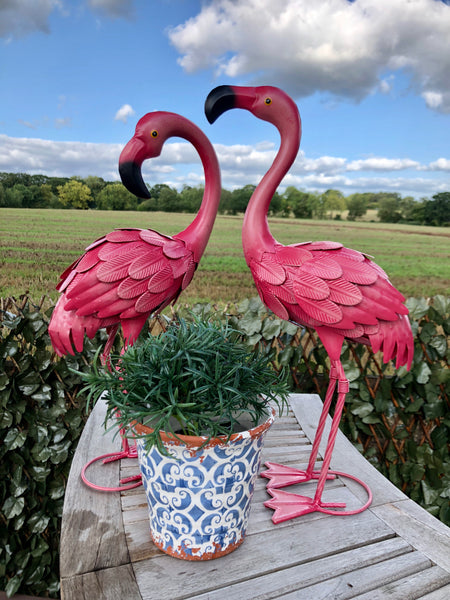 Florence the Flamingo