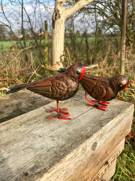 Set of 2 Robins