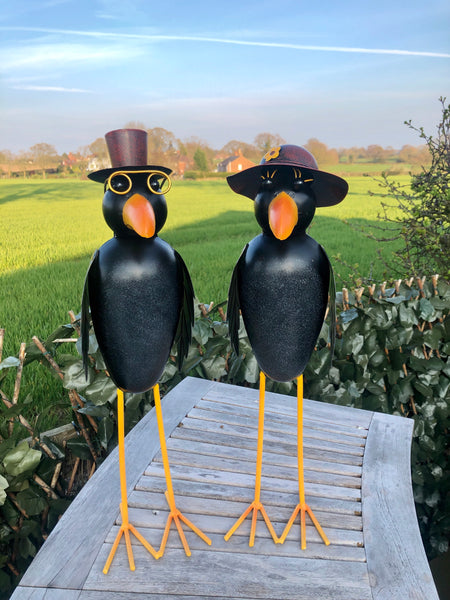Mr & Mrs Crow