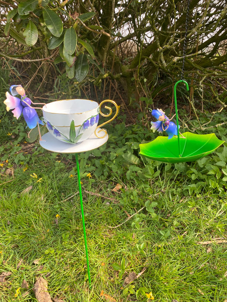 Fairy Bluebell Cup