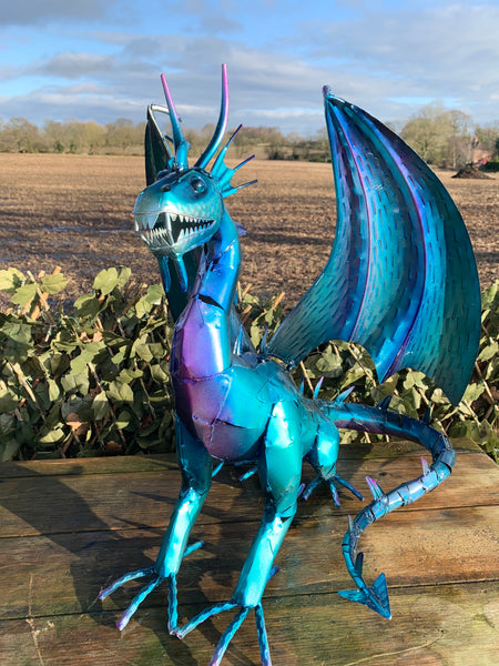 Rhaegal the Blue Dragon!