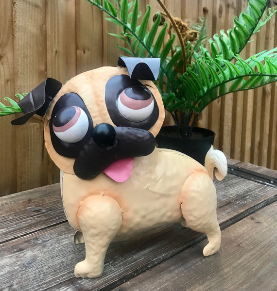 Pablo the Pug