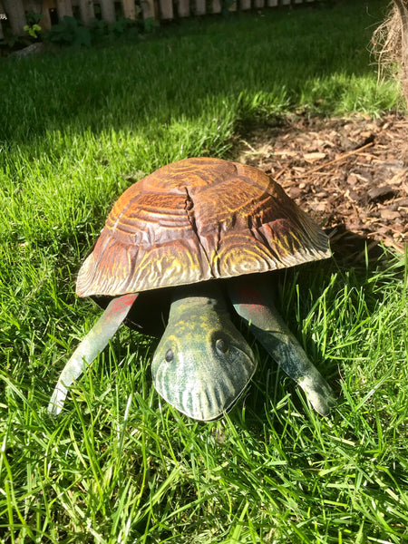 Tommy the Tortoise