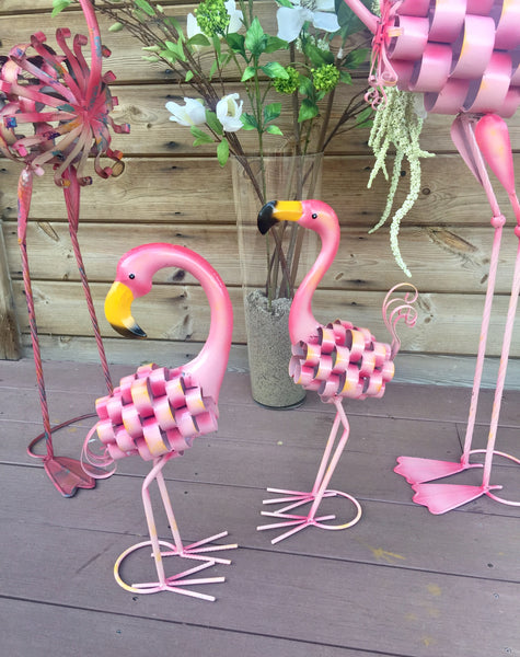 Freddie the Flamingo!